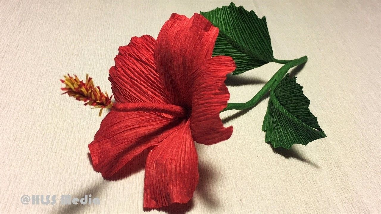 How to make diy hibiscus crepe paper flower tutorials papercraft how to make diy hibiscus crepe paper flower tutorialshibiscus flower origamipaper craft tutorials izmirmasajfo
