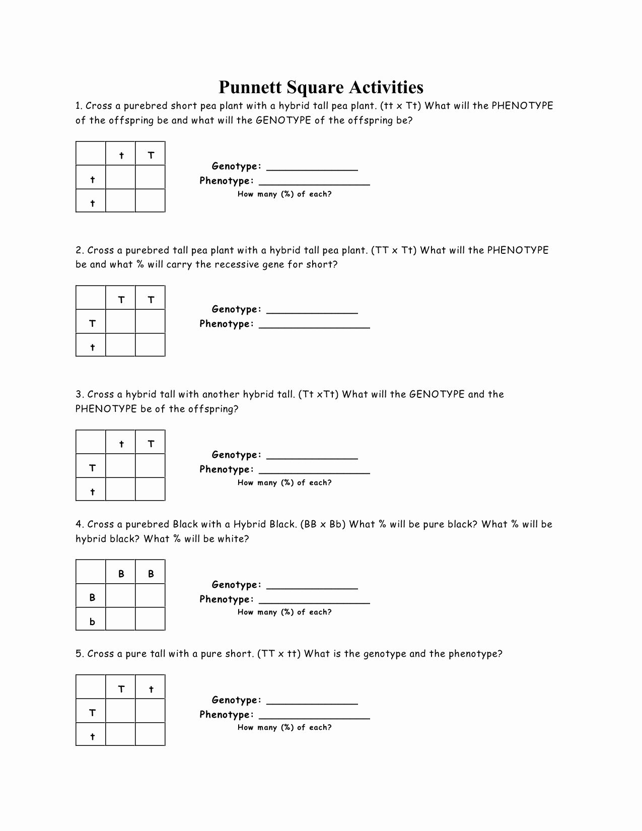 50 Punnett Square Practice Worksheet Answers In