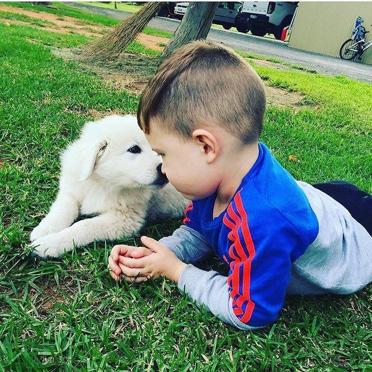 #Emma #maremma #greatbuddies #noahjoseph #love #puppy #babiesofinstagram #puppiesofinstagram #socute #oddball by emma_maremma