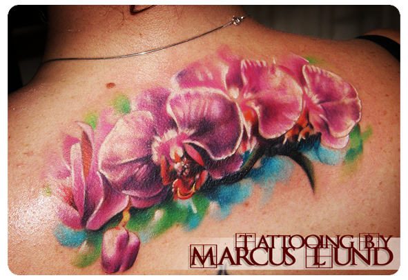 Google Image Result for http://www.1603tattoo.com/Portals/0/MARCUS%2520LUND/Marcuslund-realistic%2520orchids%2520tattoo.png