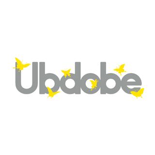 「医療福祉エンターテインメント」を通じてあらゆる人々の積極的社会参加を推進しているNPO法人Ubdobe�