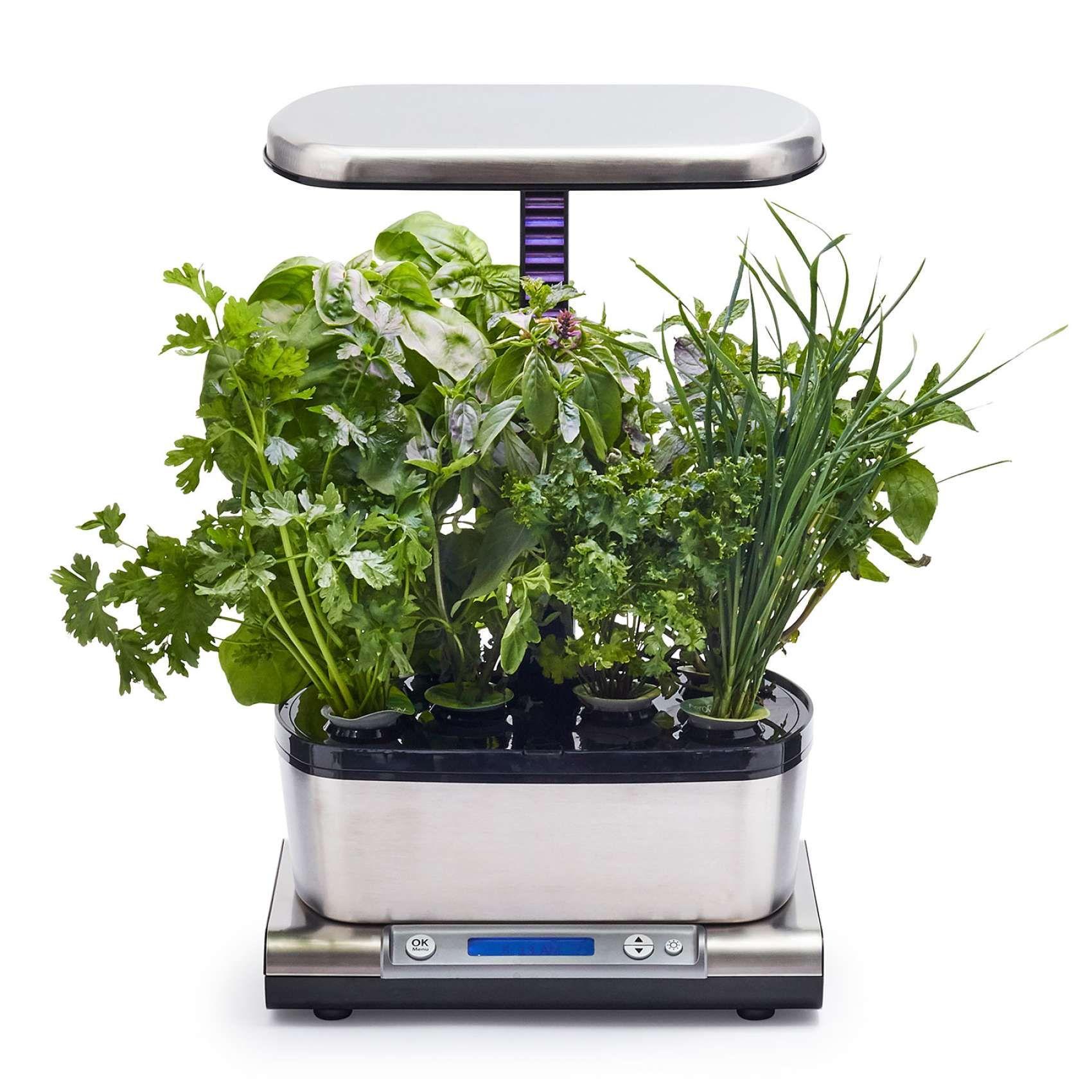 Aerogarden Harvest Elite Wifi With Gourmet Herbs Seed Pod 400 x 300