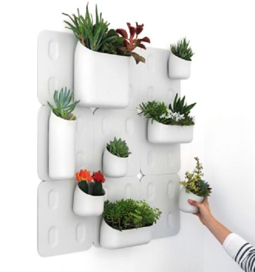 Easy Way To Organize Your Herbs With This Magnetic Wall System Indoor Vertical Gardensvertical