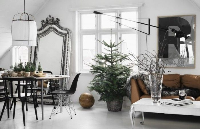 Its like a mini xmas tree farm ( and that lamp again!!!)