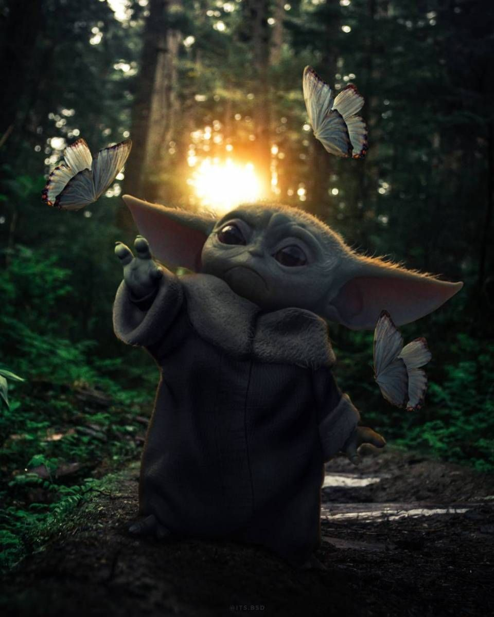 Baby Yoda With Butterfly In 2020 Yoda Wallpaper Yoda Images Star Wars Wallpaper