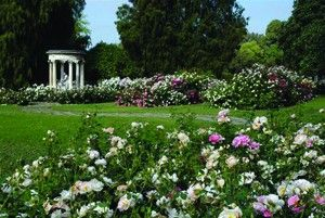 The Huntington Library, Art Collections and Botanical Gardens on http://www.hortmag.com