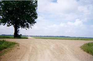 Robert Johnson New Orleans Google Search The Crossroads Outdoor Country Roads