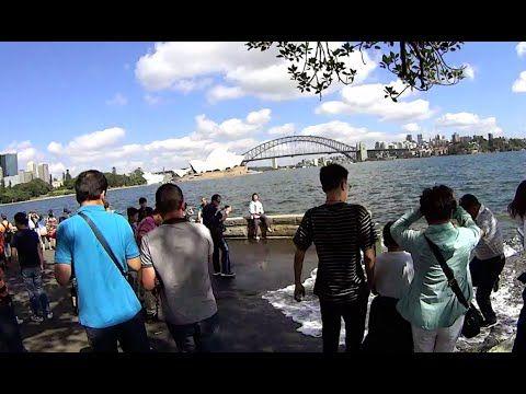 8648bbfd2607efa4f4c749a5d07a682d - Sydney Opera House To Botanic Gardens Walk