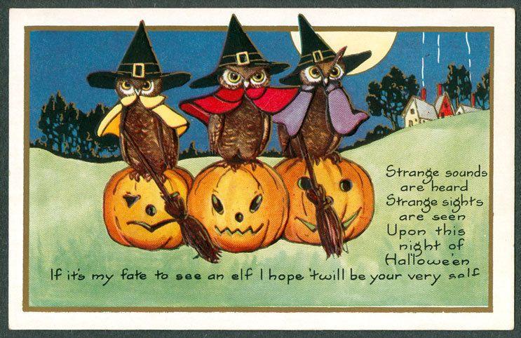 Vintage Whitney Halloween Postcard Three Owls Dressed As Pilgrims On Pumpkins