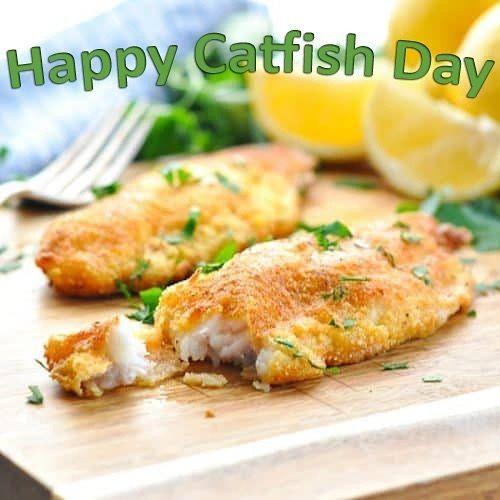 Yummy! www.rksshots.com #potd #instalike #igers #catfish