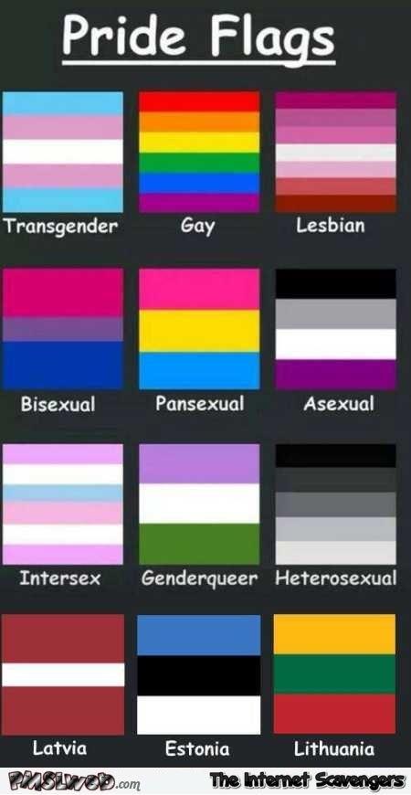 Nyc lesbians b - 1 5