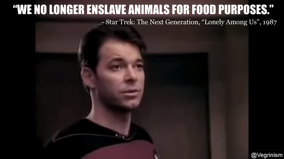 Image result for we no longer enslave animals star trek
