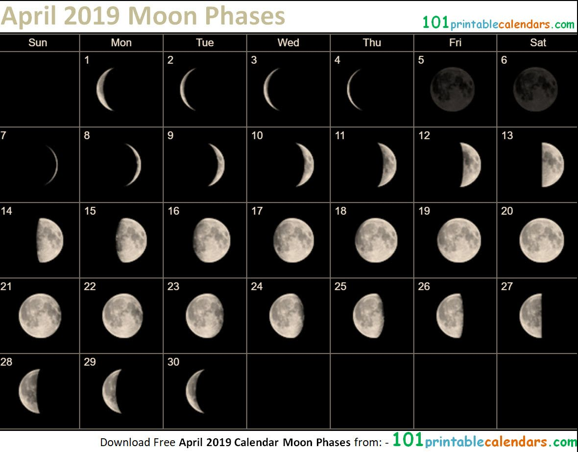 April 2019 Calendar Moon Phases Moon Phases 2019 Calendar Moon
