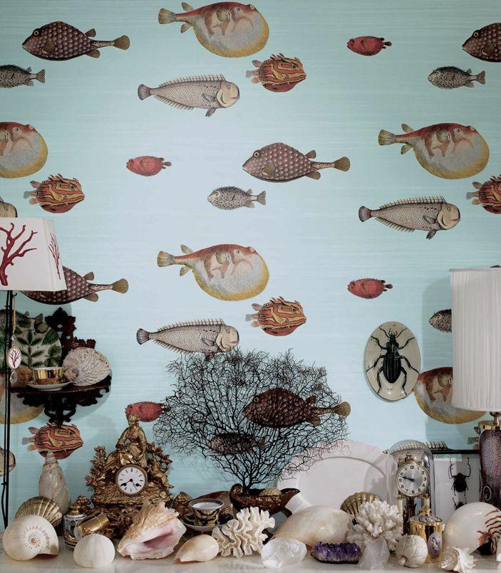 Penser au livre de patrick mauries surles cabinets de curiosit s decor cabinet de curiosit - Livre renovation maison ...
