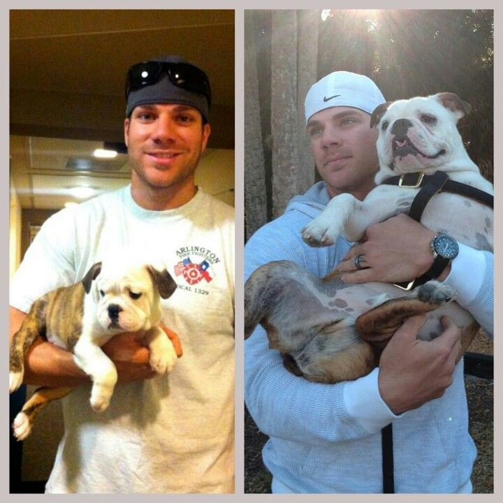 Chris Davis and an english bulldog :: heart melting ::