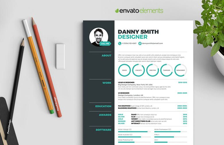 Resume 3 - A Resume Template with an infographic representation - resume 5 pages