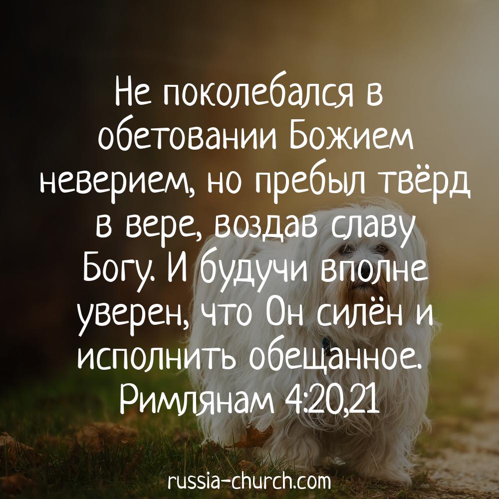 открытки для укрепления веры в бога глубокой обрезки