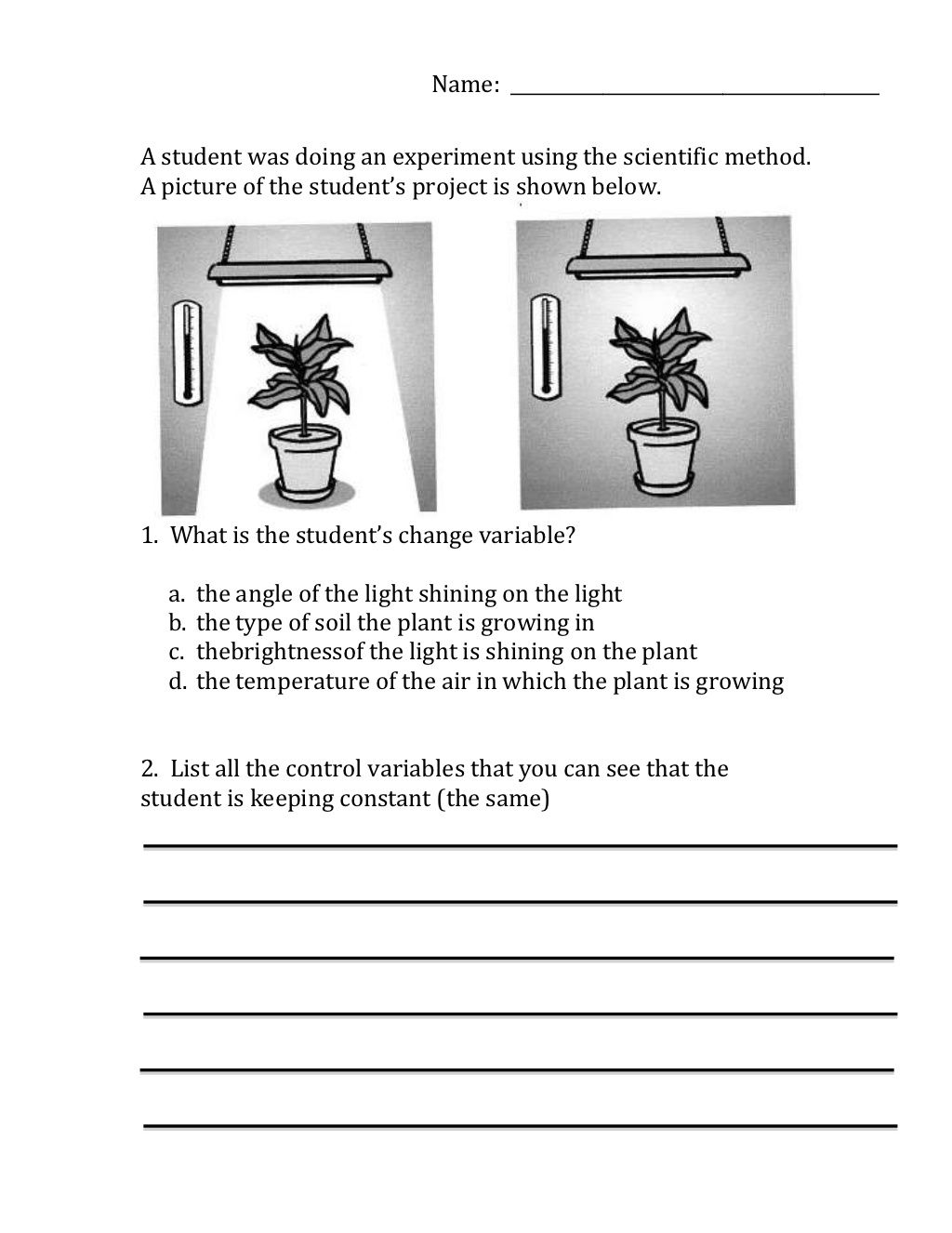 Scientific method variables (worksheet) by Moira