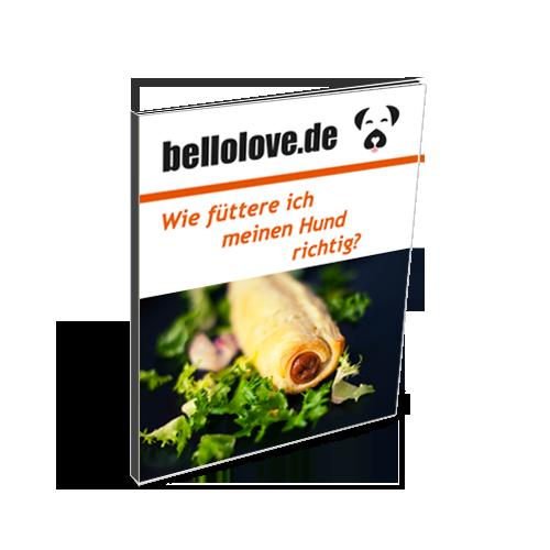 Richtig Füttern - GRATIS PDF