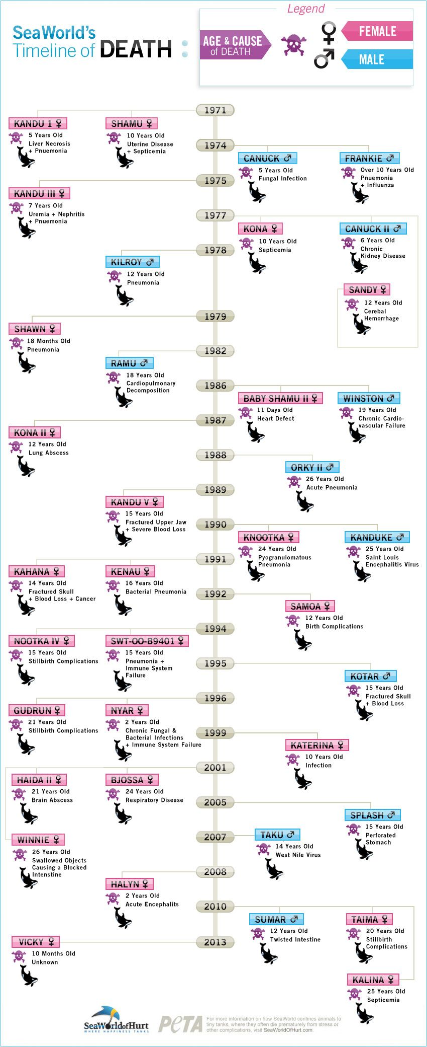 seaworld's timeline of death | infographics and flow charts | sea
