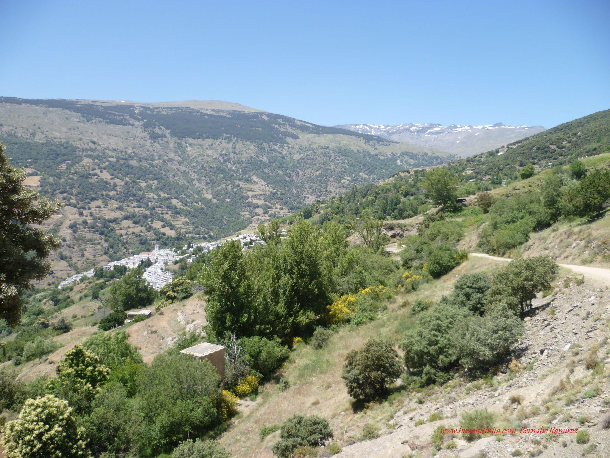 Capileira y el Veleta (Granada)