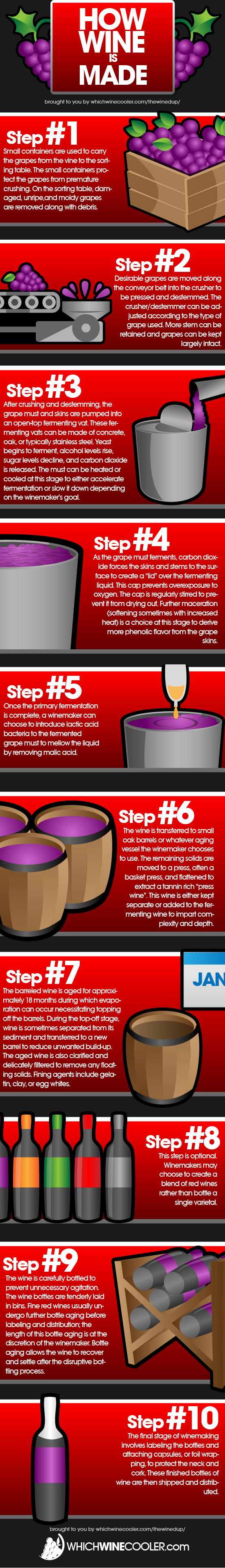 10 Steps to Making Red Wine