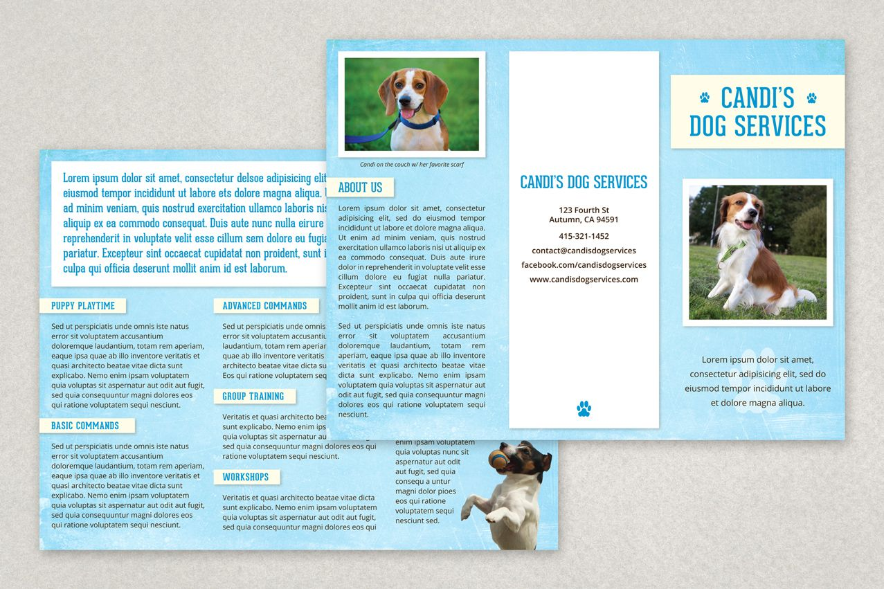 Pet Services Brochure Template From Inkd Doggiedaycare Training