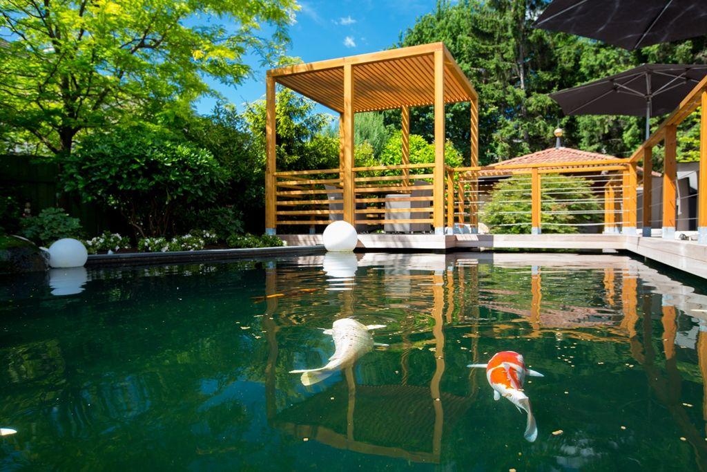 Koi Fische Im Dolcevita Hotel Feldhof Terrasse Mit Koi Teich