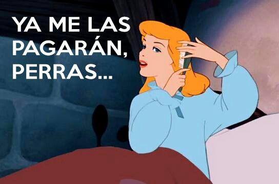 Gorditos En Lucha Frases Divertidas Humor En Espanol Memes Divertidos