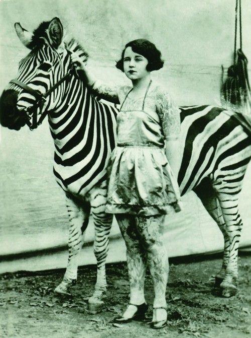 zebra + circus girl