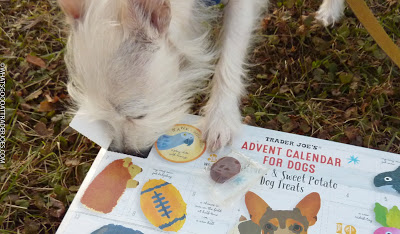 Trader Joe's Advent Calendar For Dogs Dogs, Dog holiday