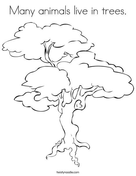 Many animals live in trees Coloring Page from TwistyNoodle - new coloring page fig tree