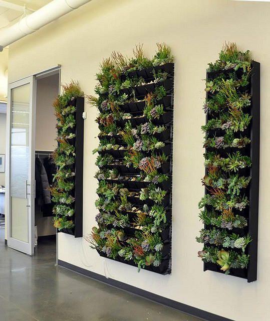 Peets Coffee Indoor Tropical Green Wall