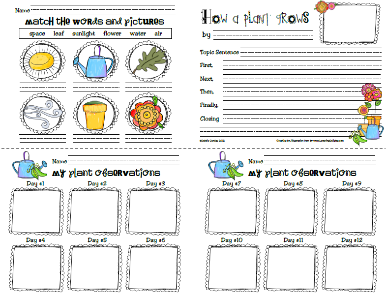 first grade science journal | ... oberservation journal/log that ...