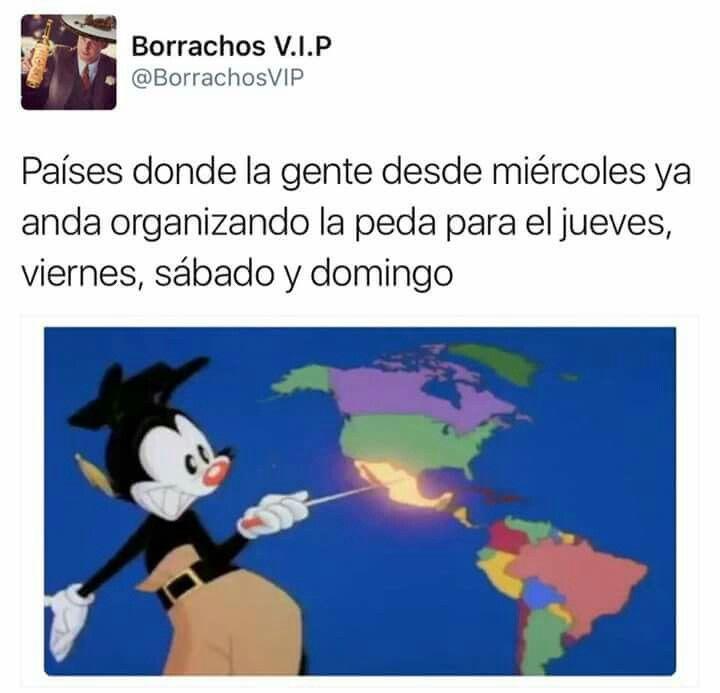 Pin De Alondra Villanueva En Frases En Espanol Memes Divertidos Memes Graciosos Memes Para Reir