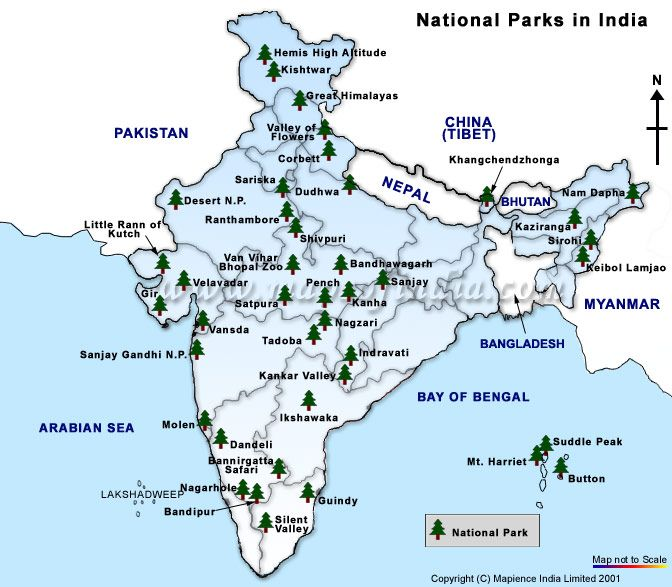 National Park In India Map national park in india   Google Search | ss National Park In India Map