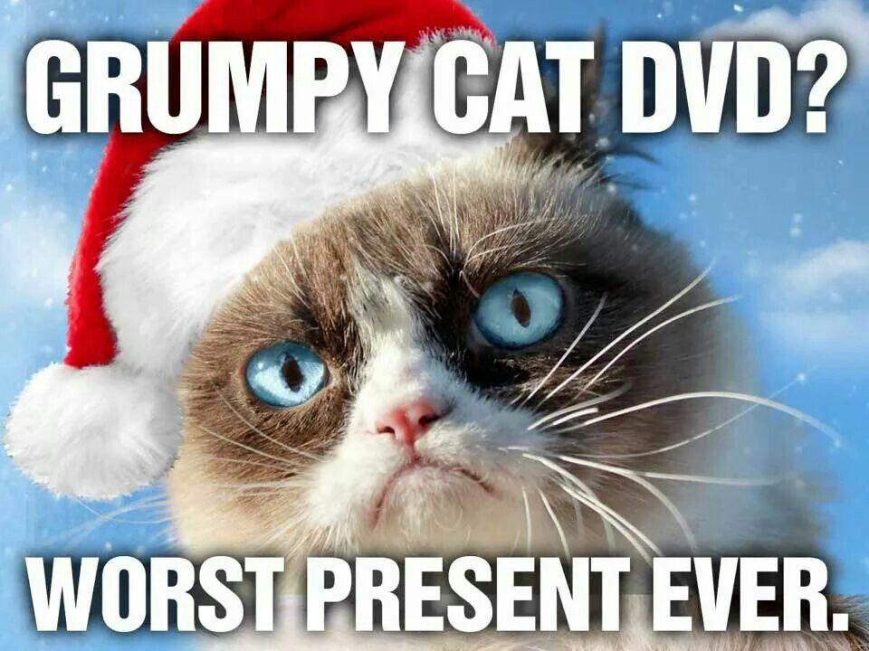 Grumpy cat worst christmas ever gift