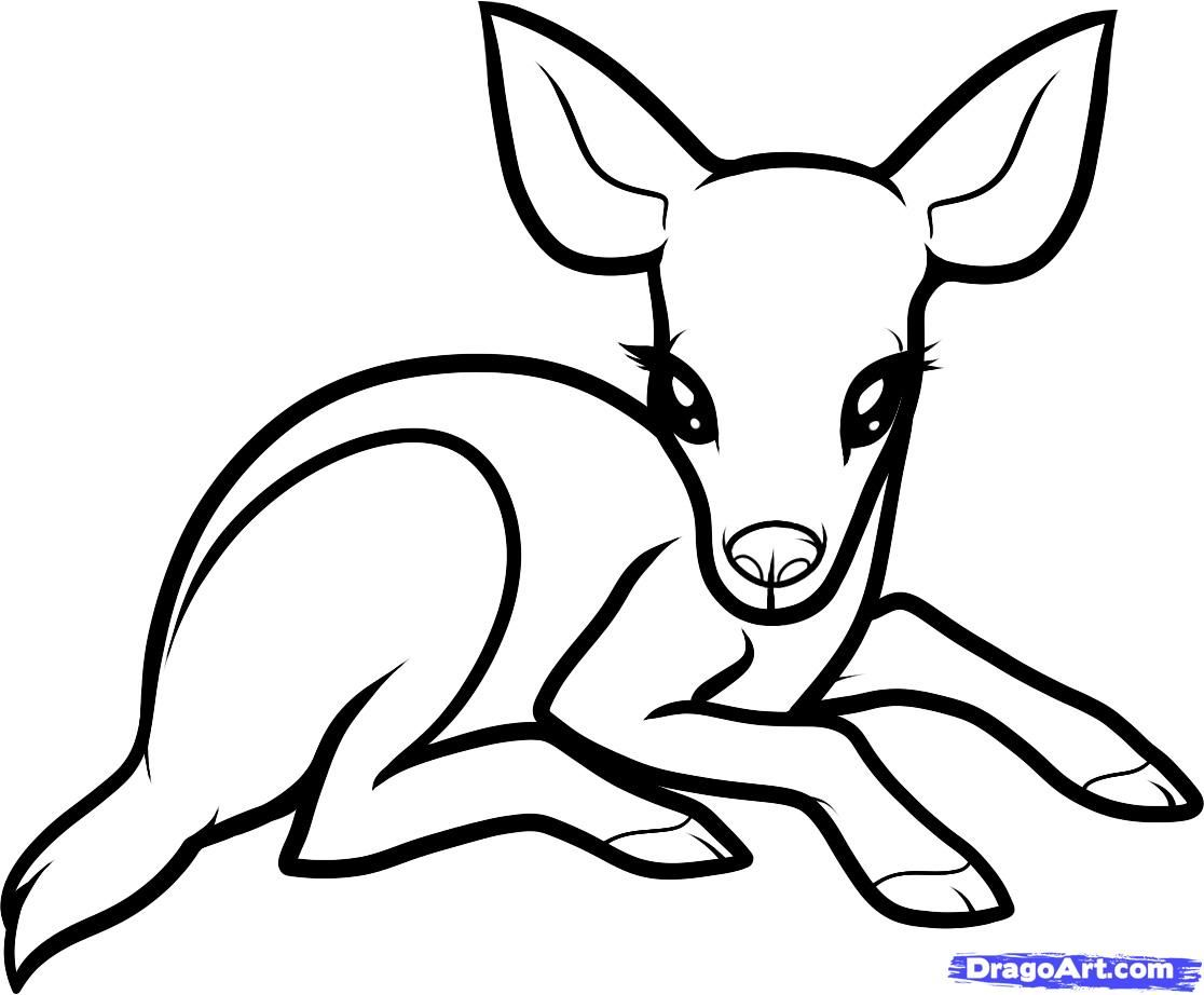 How To Draw A Baby Deer Baby Deer Step By Step Forest Animals Animals Free Online Drawing Tutori Baby Animal Drawings Animal Drawings Cute Animal Drawings
