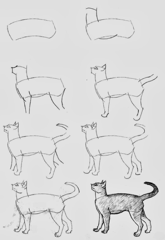 Pin de agus en dibujos | Pinterest | Dibujar, Gato y Dibujo