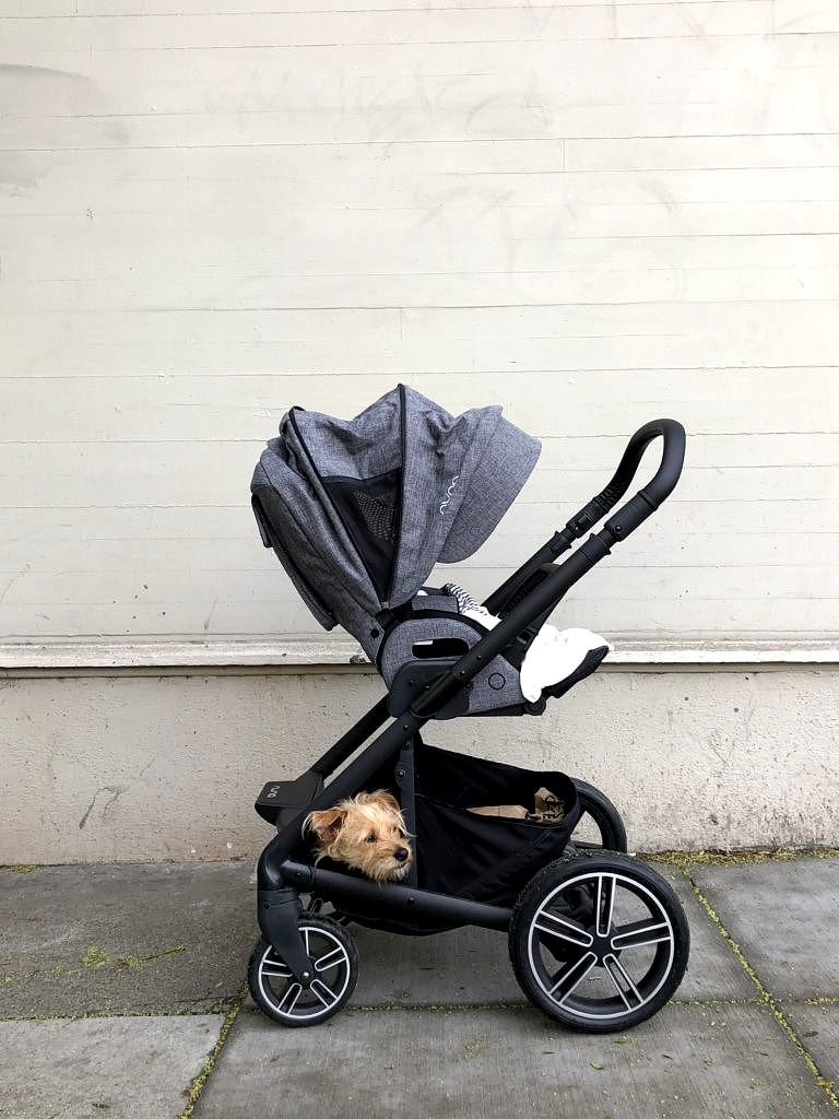 nuna car seat stroller frame
