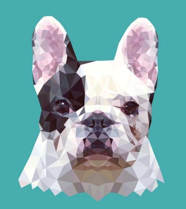 Geometric Animal Illustrations : hope little