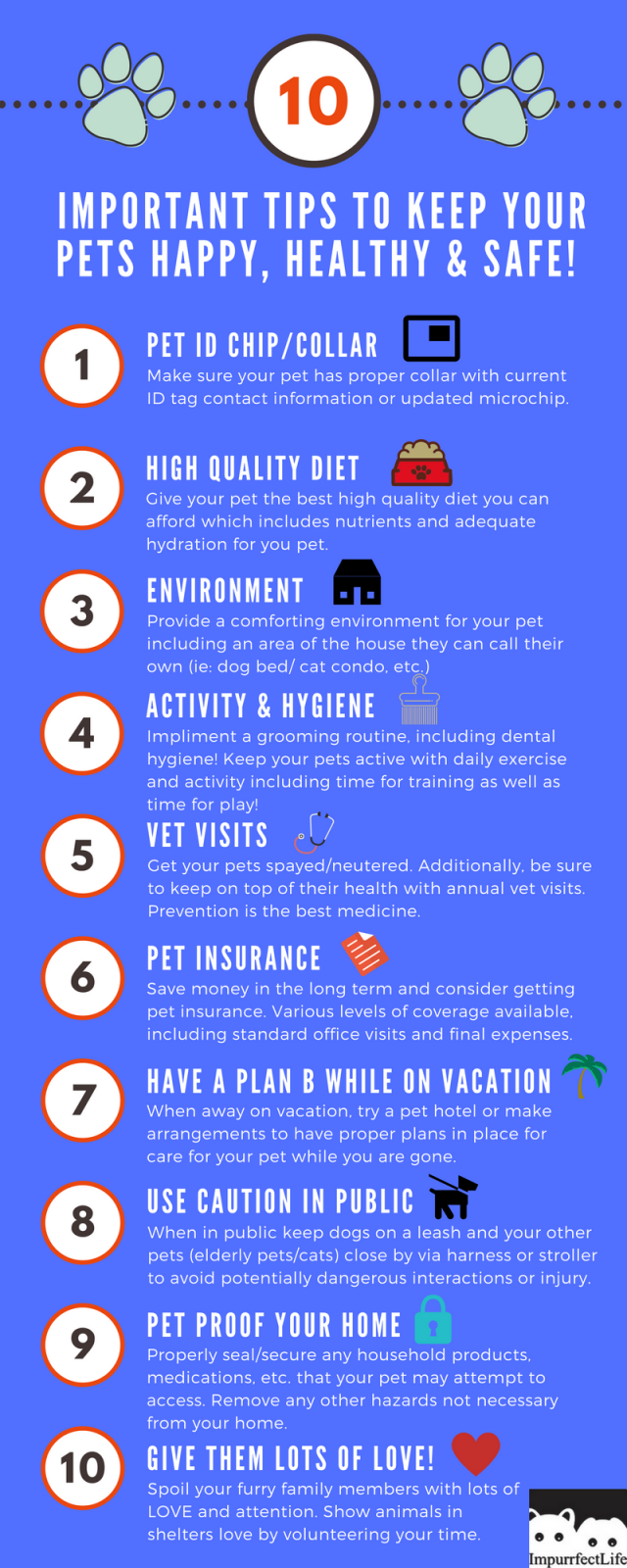 10 Important Tips To Keep Your Pets Happy Healthy And Safe Infographic Impurrfectlife Pet Health Pet Health Care Pet Care Tips