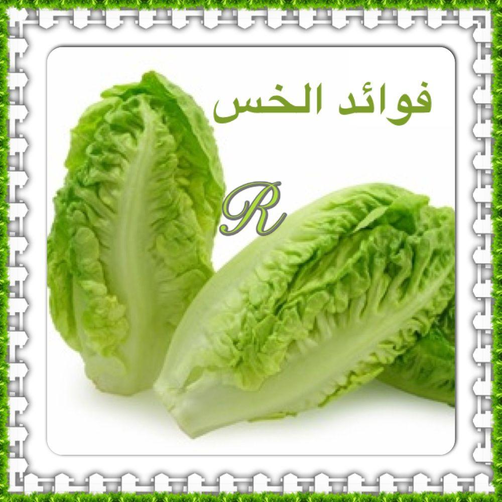 يعتبر الخس من أكثر الخضراوات الغنية بالفيتامينات و حمض الفوليك المفيد للحوامل فهو مقوي للخصوبة وعلاج للعقم ومهدئ لل Vegetables Fruits Vegetables Fruit