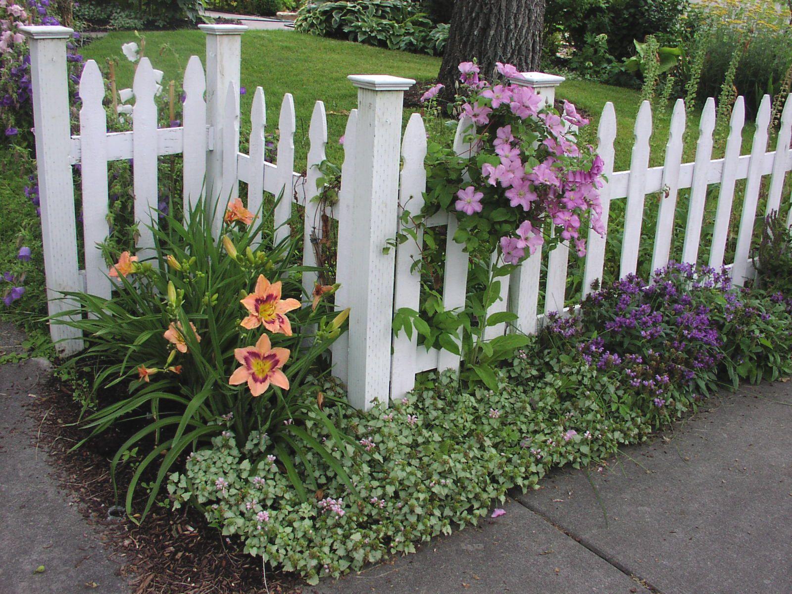 Garden fence for the home outside pinterest garden for Attractive garden fencing