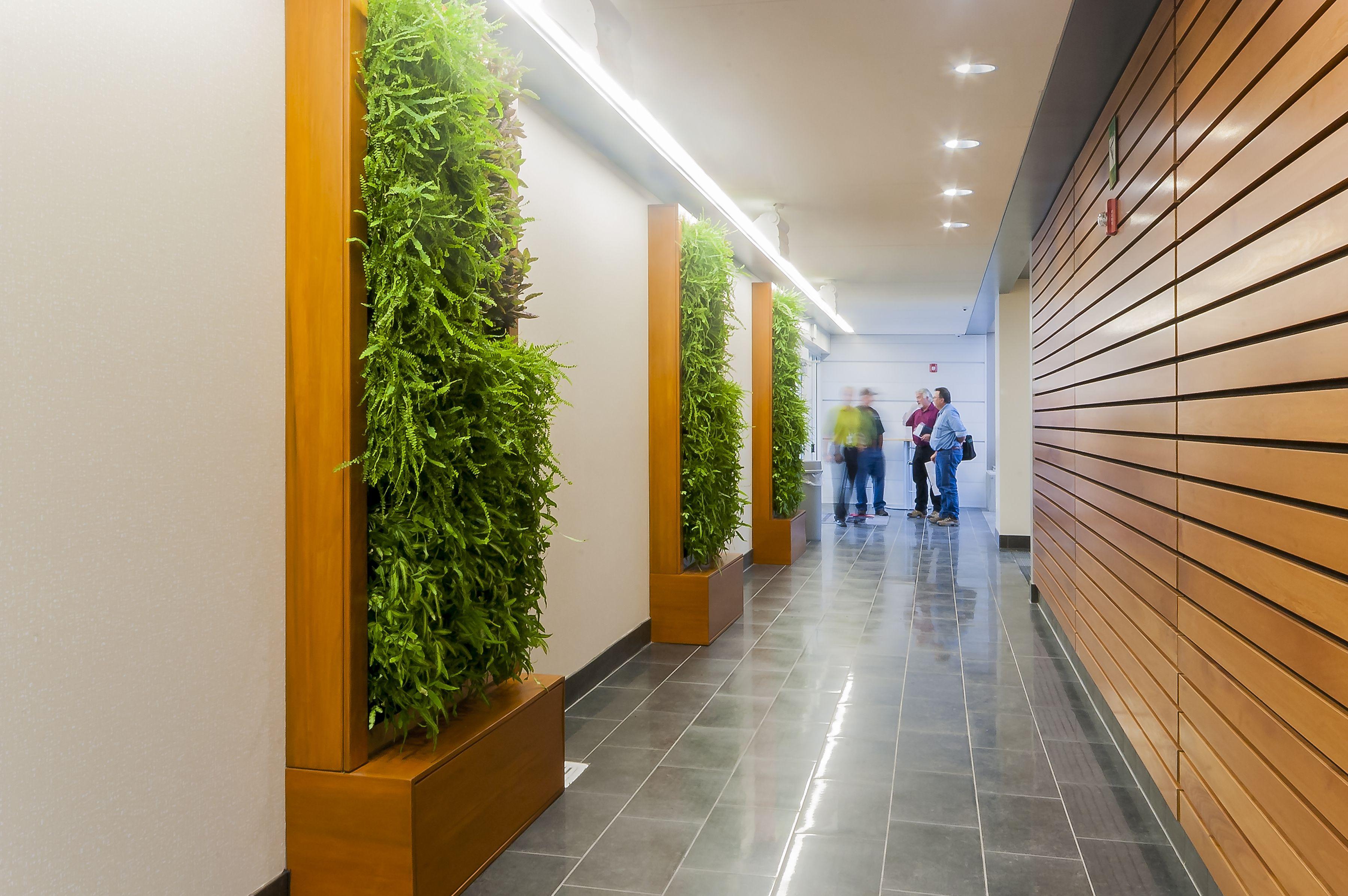 AIMS Community College Platte Building Green Wall Corridor