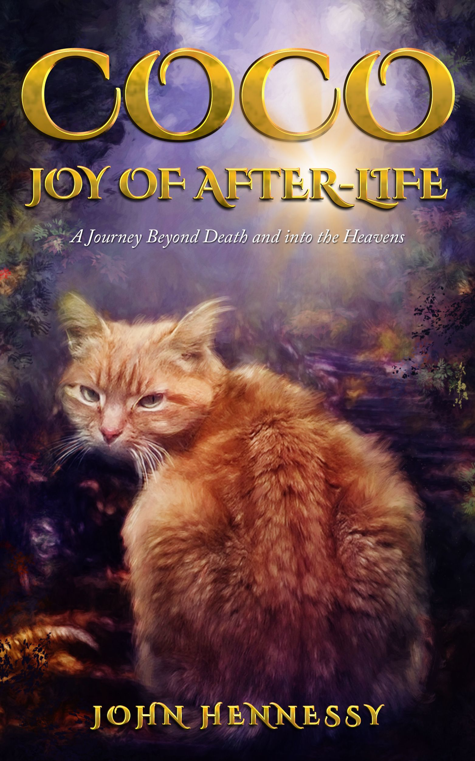 Coco - Joy of After-Life - a new release in 2018. Keep an eye on my Amazon page and website for updates! https://www.amazon.com/John-Hennessy/e/B0068UGR44/ref=sr_ntt_srch_lnk_1?qid=1503467599&sr=8-1