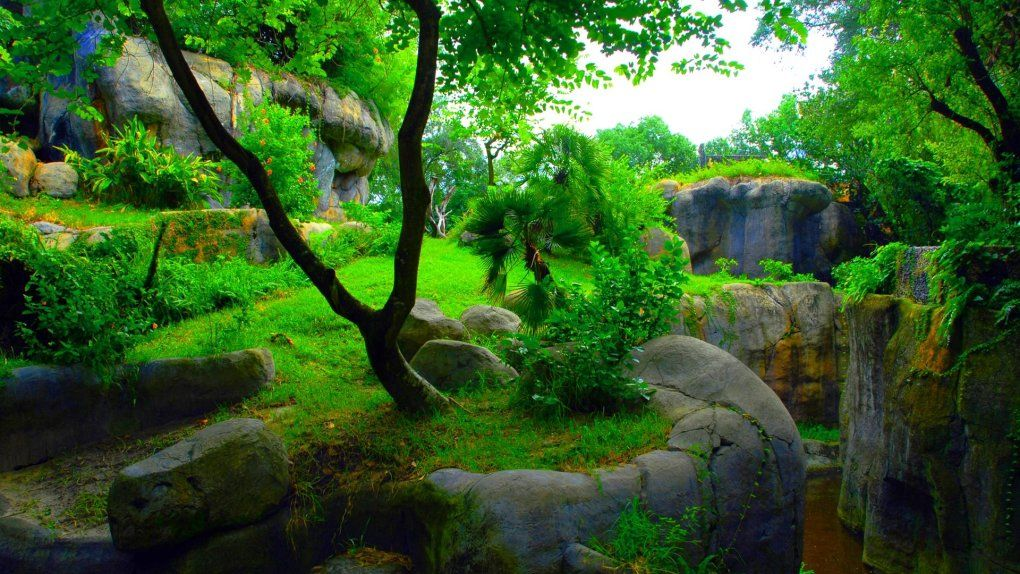 Collection Of 3d Wallpaper Green Nature Wallpaper Green Wallpaper Wallpaper Pc