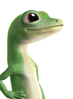 Welcome To Geico Animal Photo Gecko Geico