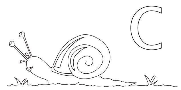 Este caracol para colorear la letra C | Hojas para colorear | Pinterest