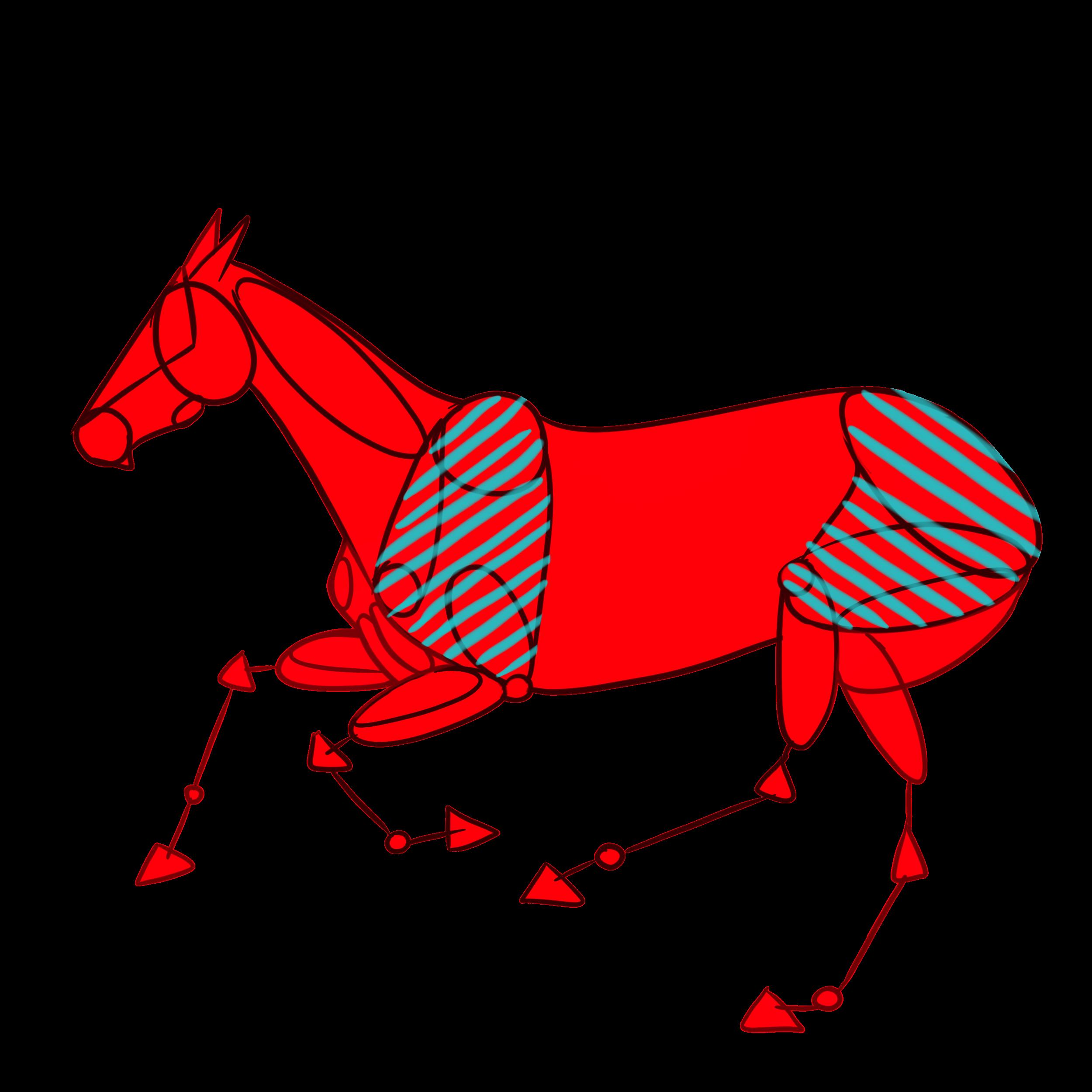 Horse anatomy in figures by konikfryzyjski.deviantart.com on ...
